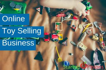 Online Toy Selling Business