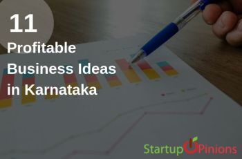 business ideas in karnataka