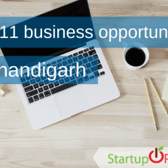 new business ideas in chandigarh