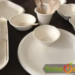 Bagasse Tableware