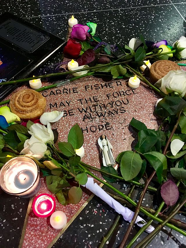 De officieuze Carrie Fisher ster in 2016 | Foto: Justin Sewell
