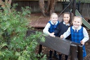 St Annes Catholic Primary School Strathfield Playgrounds