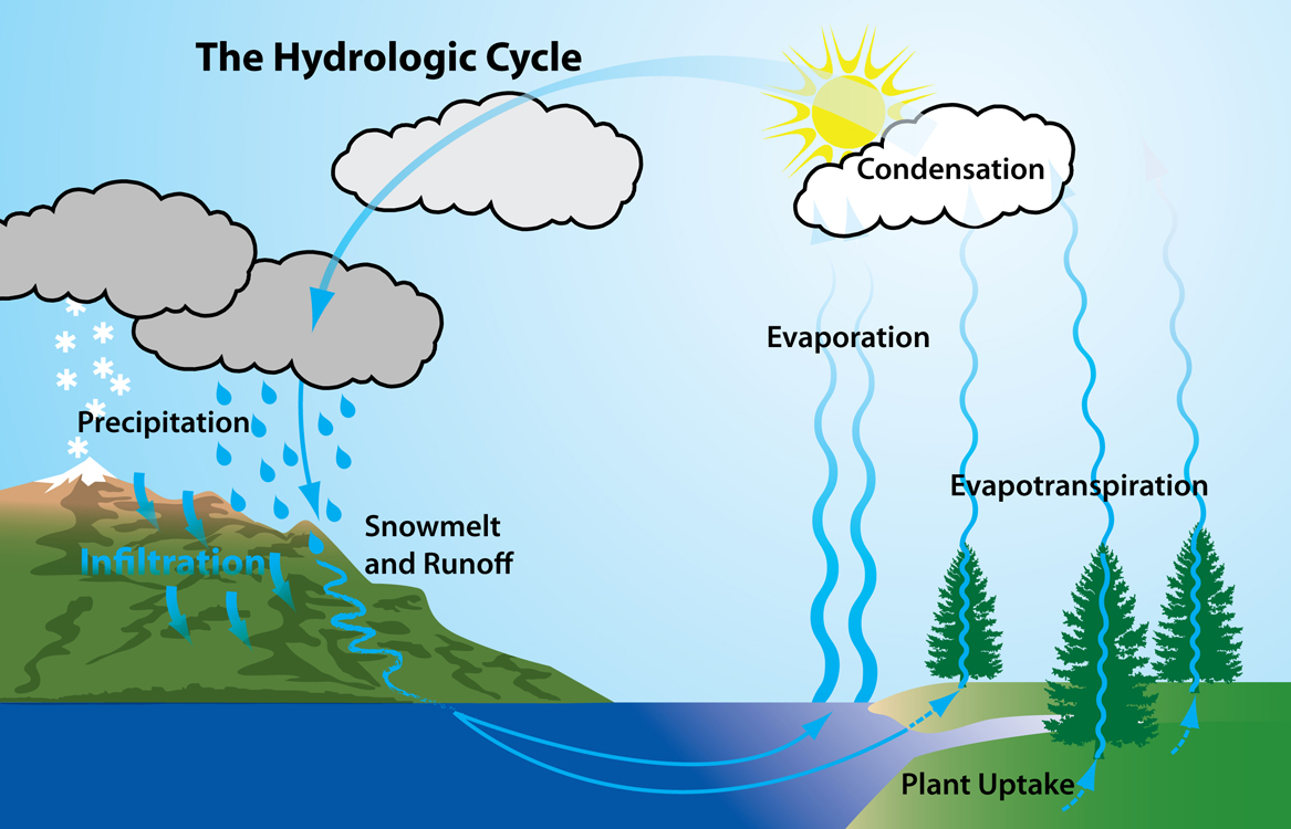 diagram of water cycle diagram printable water cycle water water cycle diagram unmasa dalha source
