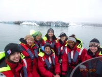 Iceland - Whale Watching