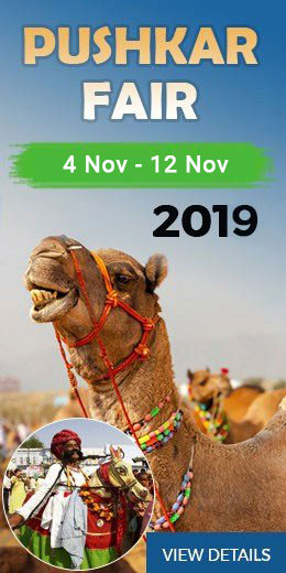 Pushkar Camel Fair Tour 2019