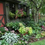 Design Collection Mesmerizing Shade Garden Design 50 New Inspiration