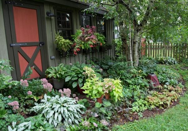 plants scott arboretum