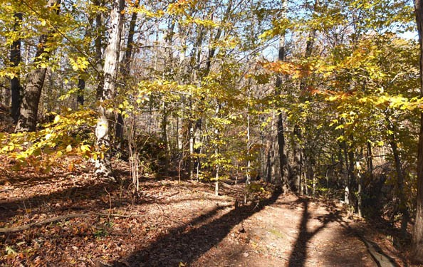 Greenbelt's green trail