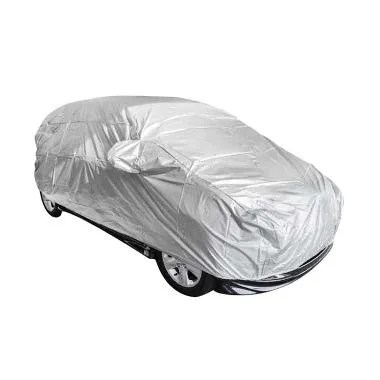P1 Body Cover for BMW Z3 - Silver