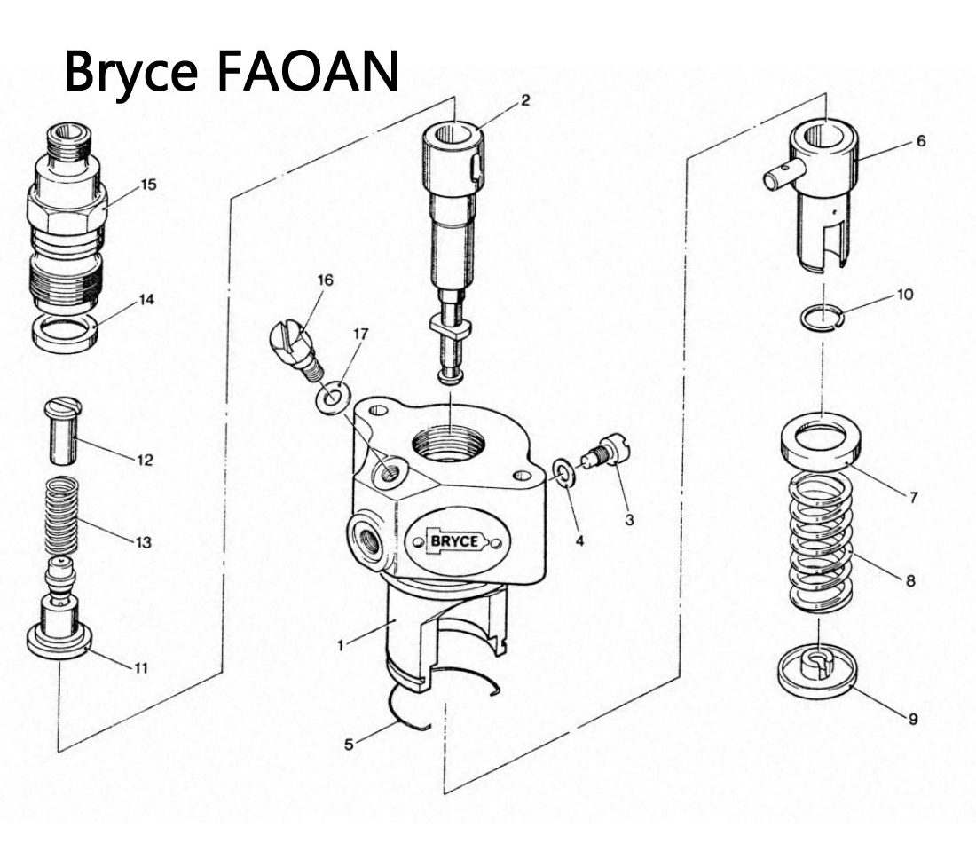 Bryce Faoan Series Fuel Pump Exploded Parts Diagram