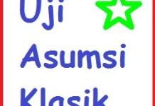 Uji Asumsi Klasik