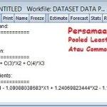 Persamaan Common Effect Regresi Data Panel dengan Eviews