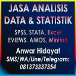 Jasa Analisis Data Statistik