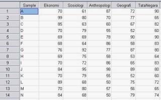 Dataset Analisis Cluster