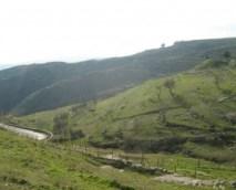 territoriomonte