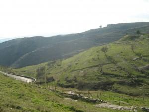 Territorio Monte