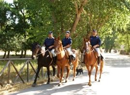 Controlli a cavallo nell'area Parco Nazionale del Gargano