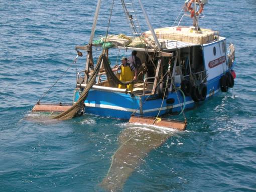 immagine d'archivio - pescatori Manfredonia - by Roxelo's
