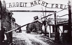 Auschwitz nel 1943