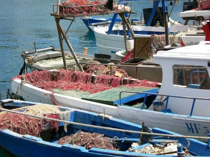 Barche per piccola pesca
