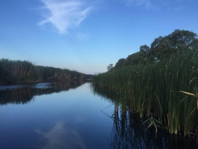 Oasi Lago Salso (ST) IMMAGINE D'ARCHIVIO