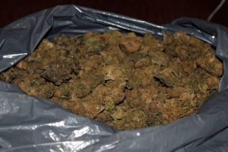 droga VIESTE (1)