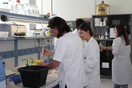 Laurea internazionale in Biotecnologie (10)