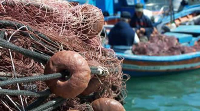 IVG.it - pescaturismo-281392.660x368