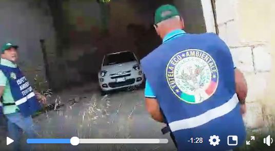 IMMAGINE IN ALLEGATO (FRAME VIDEO)
