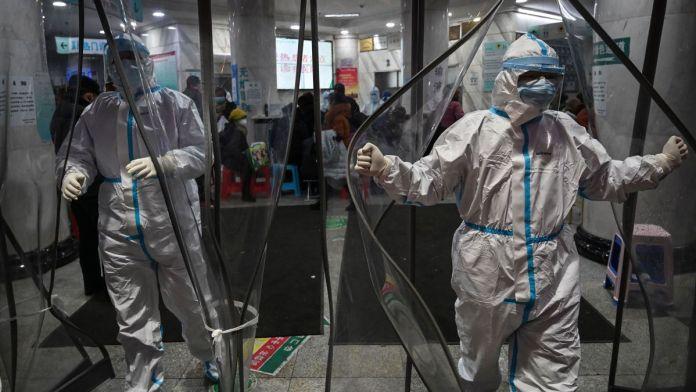 """Fanelli chiaro """"Sarcorv-2 un virus barbaro e innaturale"""". In Puglia """"deve ancora fare razzie"""""""