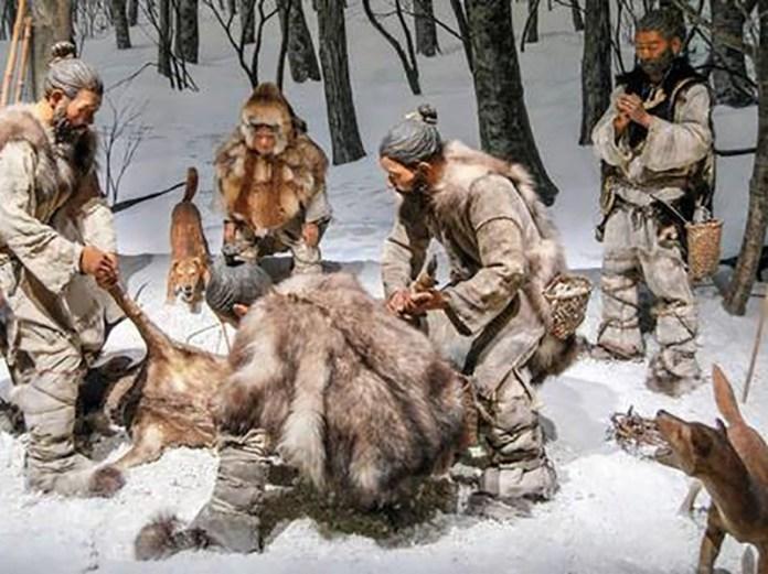 Paglicci Cani Paleolitici