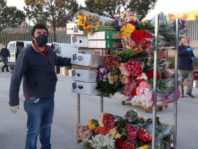 Mercato fiori Terlizzi 091