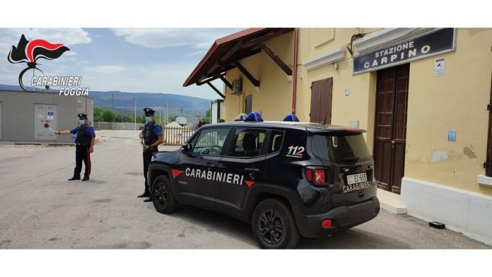 Foggia, 05 agosto 2021. Nel recente periodo, i Carabinieri della Stazione di Carpino hanno eseguito tre ordini di carcerazione, emessi dal Tribunale di Foggia e Bologna nei confronti di tre soggetti del luogo, con precedenti di polizia.