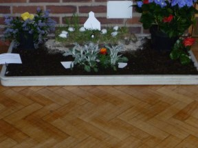 """The Falklands War"" = Our Mission Flower Festival"