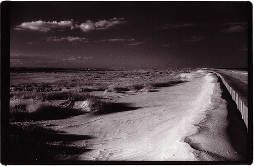 July 29, 2008 in beach, Best Of, black and white, nature | No Comments yet
