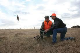 pheasantderby.jpg