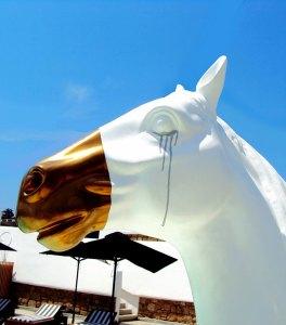 dollar-horse-gold-head