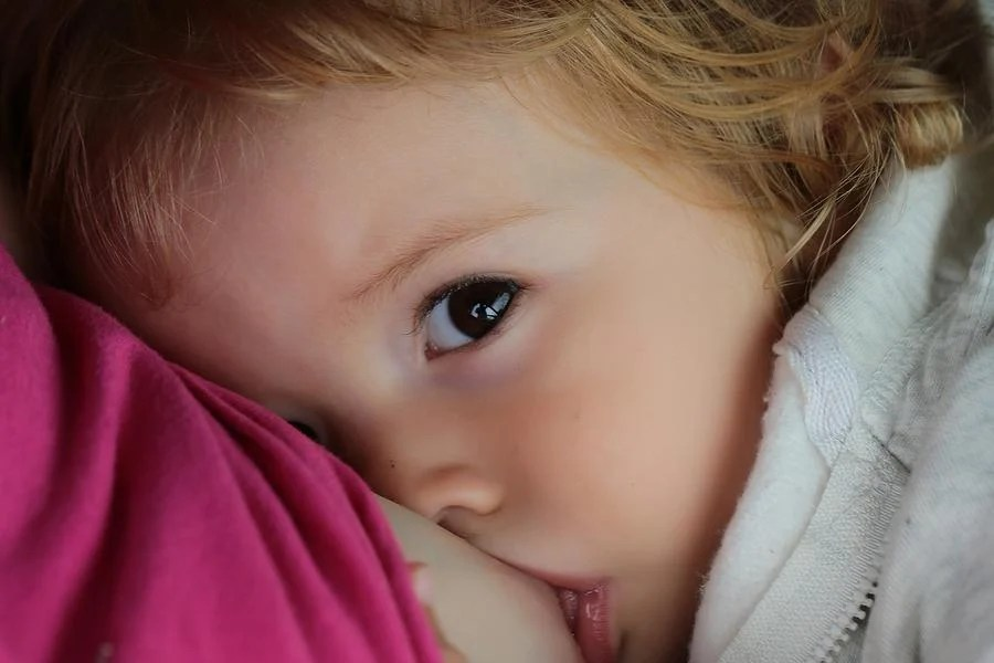 What You Need to Know About Breastfeeding a Toddler  Stay