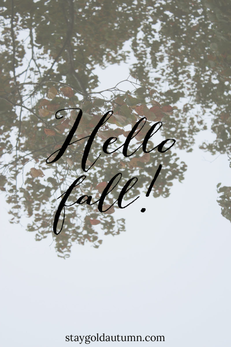 Hello fall! A little bit about my favorite season | Stay gold Autumn