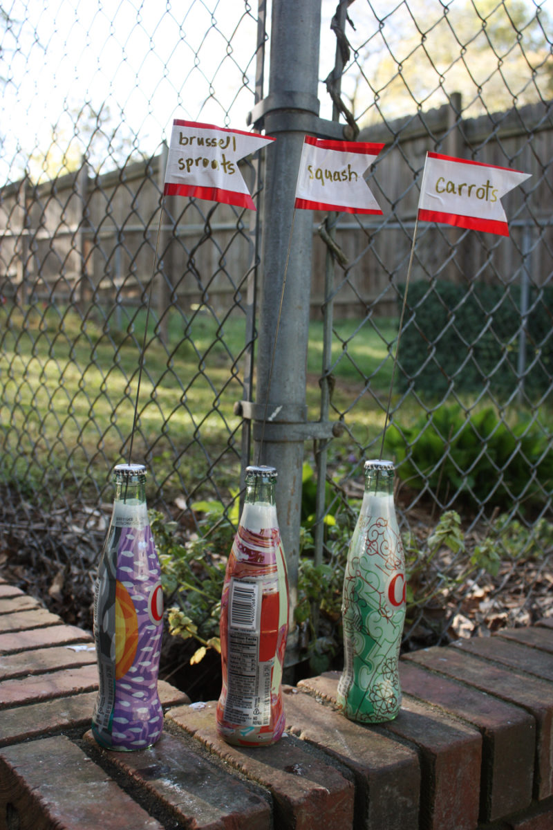 DIY garden plant markers: an easy way to recycle glass bottles and add more color to your yard! | Stay gold Autumn