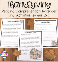 Thanksgiving Reading Comprehension Passages and Activities [ 3000 x 3000 Pixel ]