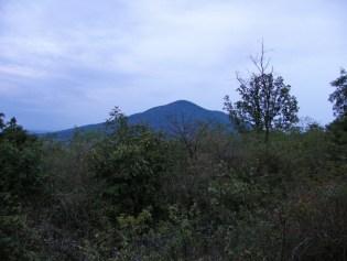 Gudurički vrh