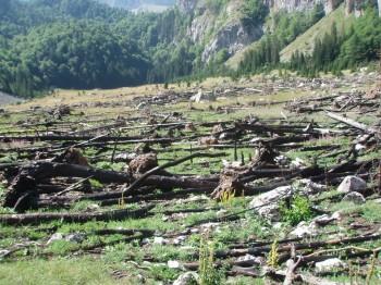 Dolina Suha jezera(granica BiH i CG)