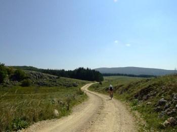 Zmija puta vijuga preko Male Brezovice