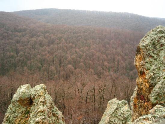 pogled sa stena
