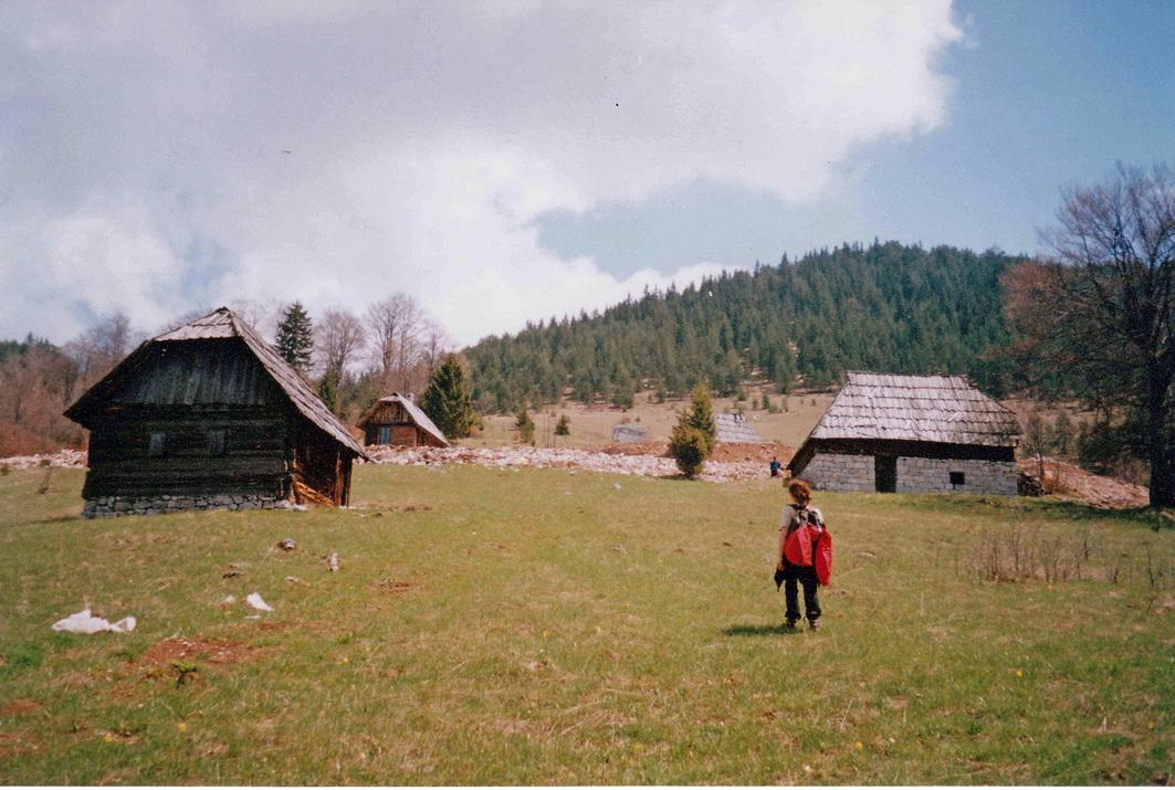 Livada na Zmajevcu, u pozadini Zborište