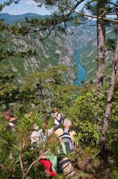 Pogled se survama u plavu Drinu