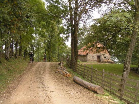 Na putu ka Gornjim Banjanima