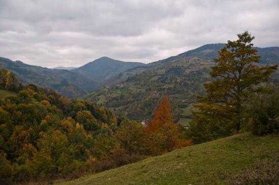 Pogled ka dolini Studenice uzvodno od Devića