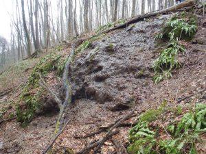 Vodopad na Kozarskom potoku